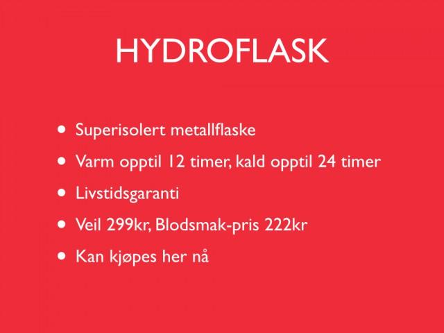 2013-11-05 - Handlekveld.019